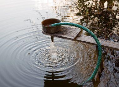 Teichtechnik: Filter für den Gartenteich