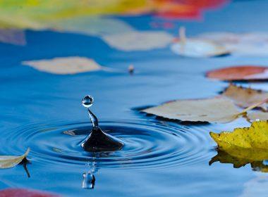 Filtermaterial für den Teich