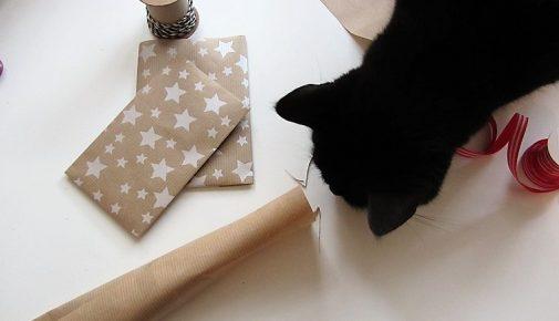 Adventskalender für Haustiere