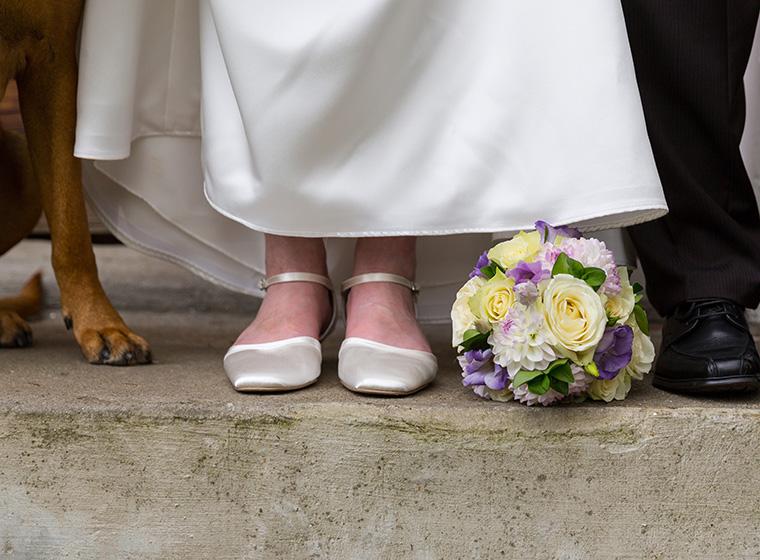 Heiraten Mit Hund Der Tierische Trauzeuge Zooroyal Magazin