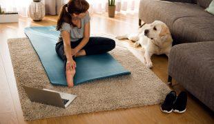 Fitness mit Hund im Sommer