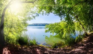 Mühlenbecker See