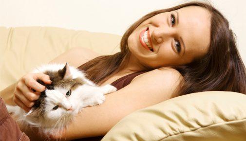 Schwangerschaft mit Katze