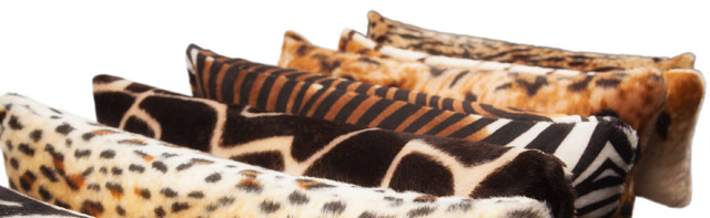 4-cats-baldrian-schmuserolle-4