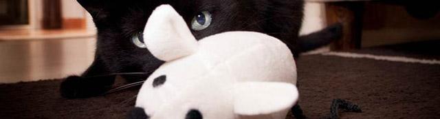 4-cats-schmusemaus-mit-baldrianwurzel-3