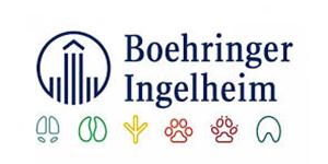 Boehringer Ingelheim Hundefutter