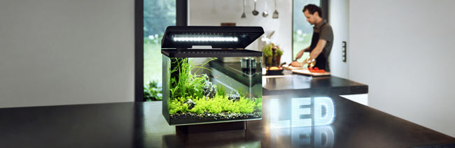 Juwel-Aquarium-Vio-40-LED